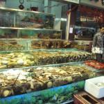 Cantonese restaurant fresh seafood fishtanks