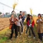 Farm Outdoors Team Building Workshop Colleagues